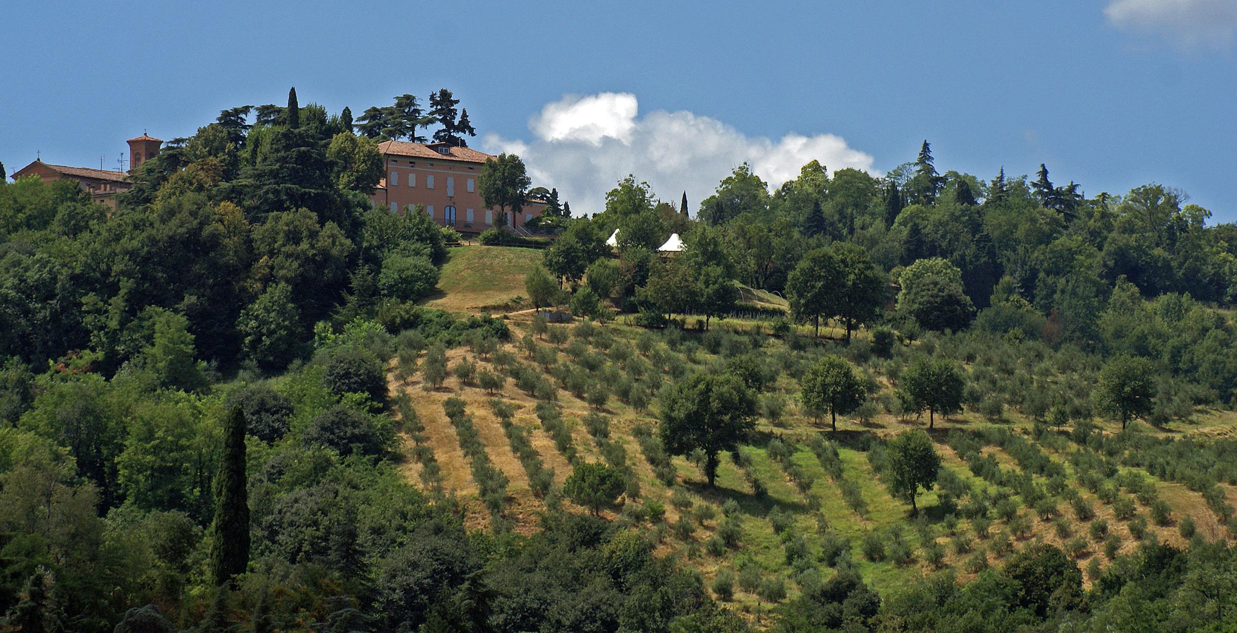 Azienda Agricola Ca' Scarani